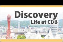 cdb_discovery_bn