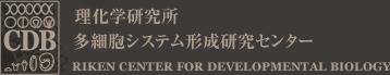 CDB 理化学研究所 発生・再生科学総合研究センター [RIKEN CENTER FOR DEVELOPMENTAL BIOLOGY]
